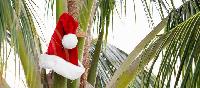weihnachten in australien hei t das ferienzeit am strand. Black Bedroom Furniture Sets. Home Design Ideas