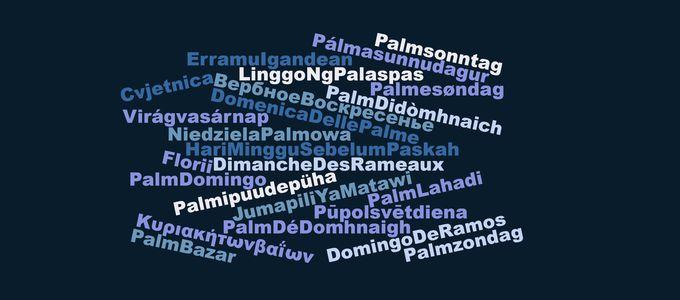 Al Final De La Palmera Calendario.El Comienzo Del Final El Principio De Lo Nuevo Nac Today